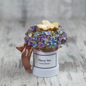 Flower Box Łódź - białe małe okrągłe pudełko z kwiatami: hortensja