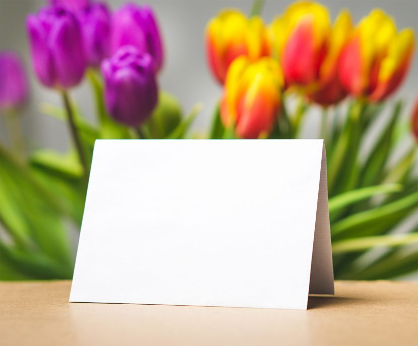 Poczta Kwiatowa - bukiet tulipanów