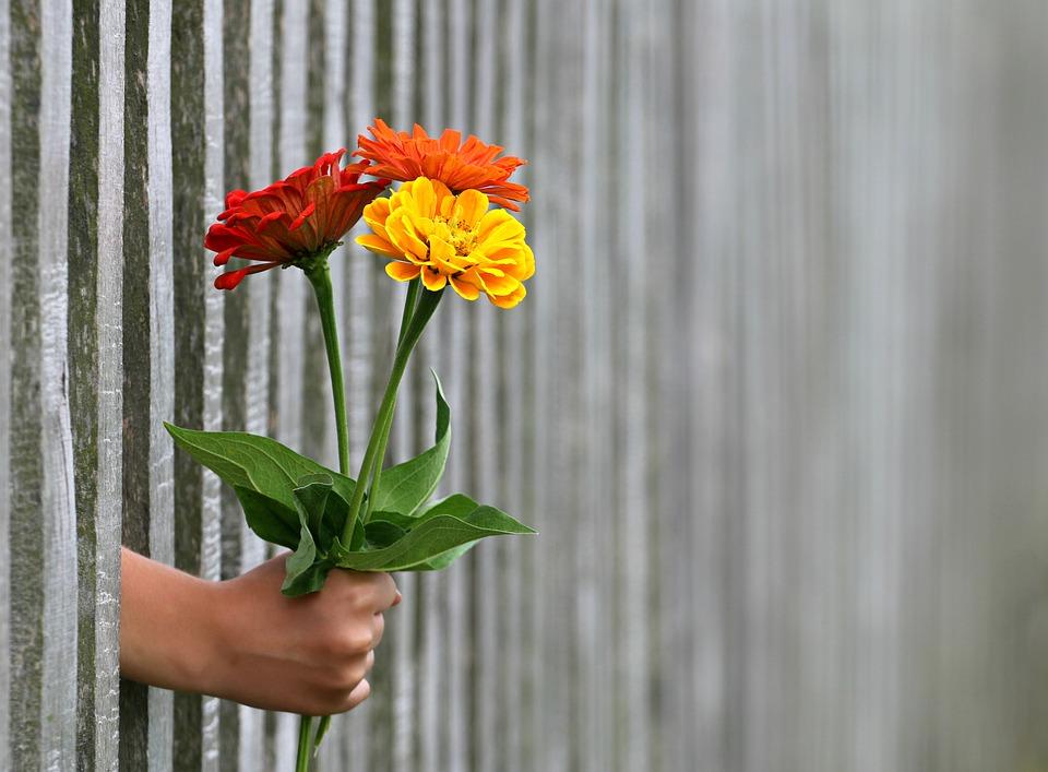 Poczta kwiatowa podaje kwiaty