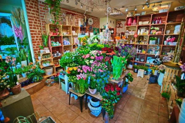 Poczta kwiatowa - wnętrze kwiaciarni internetowej