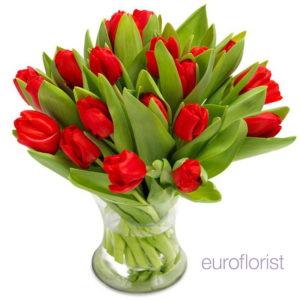 Bukiet dwudziestu czerwonych tulipanów wstawionych w wazon z wodą - dostawa poczty kwiatowej łódź, zgierz