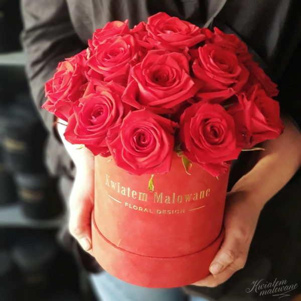 Flower Box sredni czerwony flokowany czerwona roza trzymany w rękach na ciemnym tle w kwiaciarni Kwiatem Malowane Poczta Kwiatowa